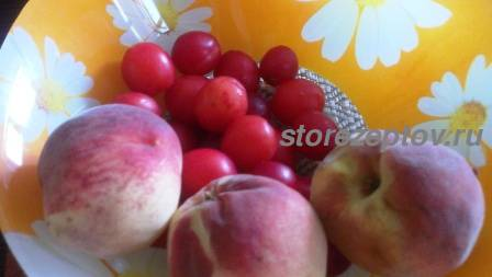 Персики и сливы для варенья