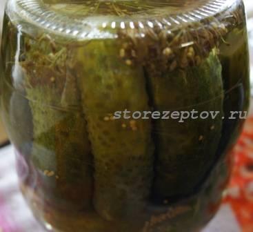 Огурцы маринованные с зернами горчицы на зиму