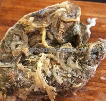 Приготовление домашней буженины из свинины: рецепт с пошаговым фото